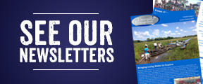 see our newsletters