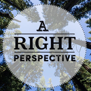 A-Right-Perspective
