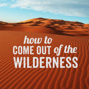 How-to-Come-Out-of-the-Wilderness